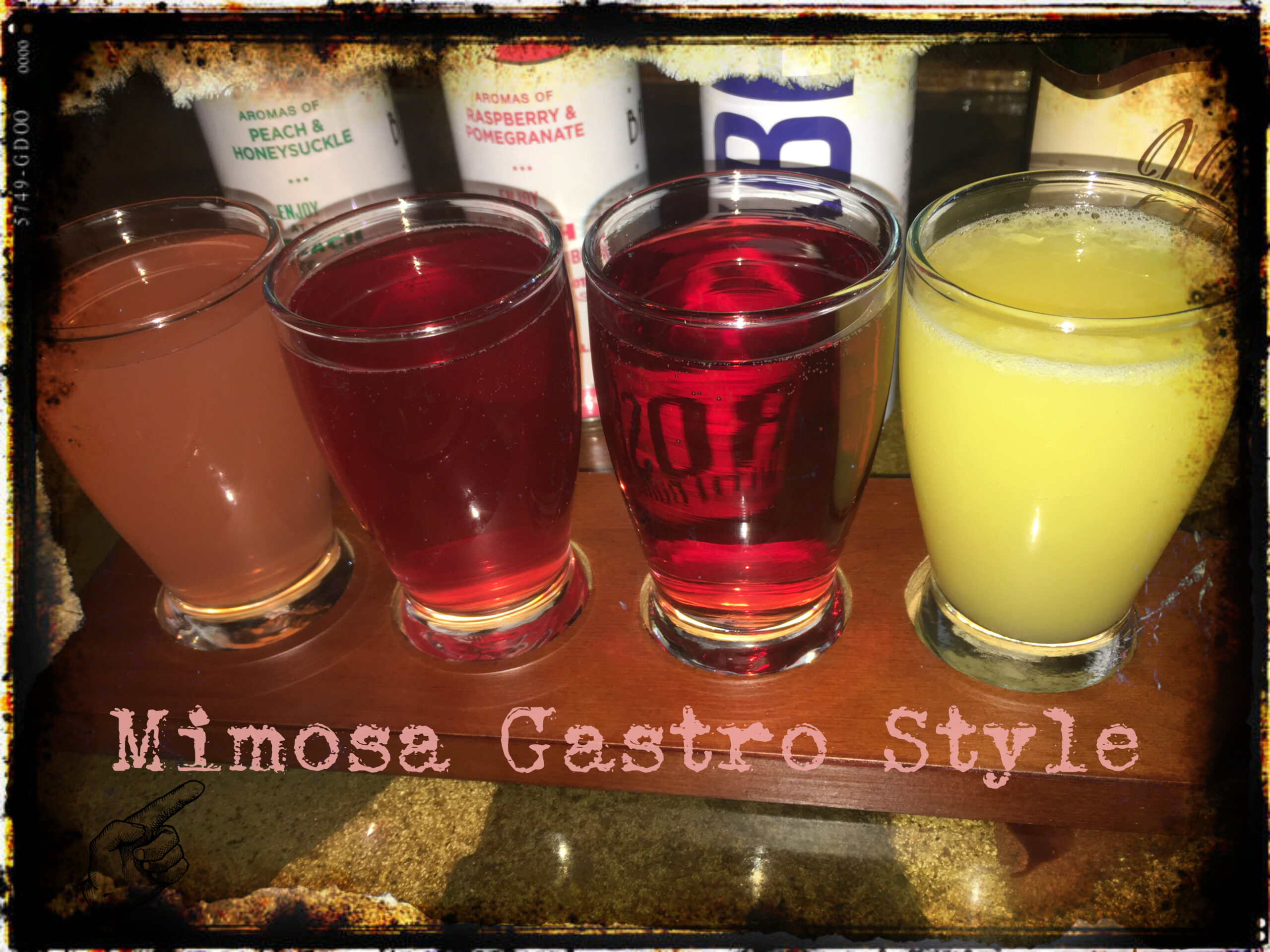 Read more about the article Mimosa Gastro Style